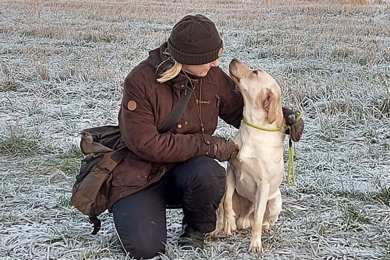 Aloittelevien koirakoiden Peruskurssi 2 verkossa alk. 4.3.2021